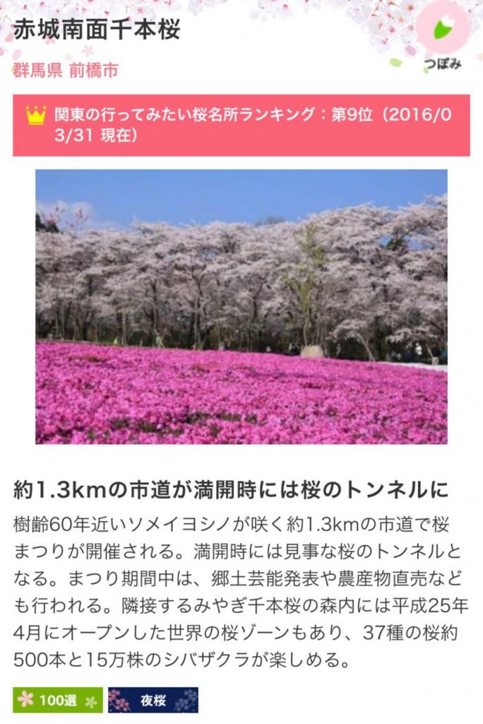群馬県前橋市/桜/東洋不動産本社宮代店
